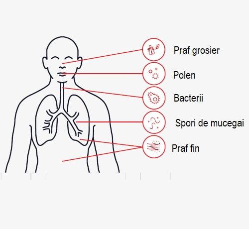 factorii poluanti din interior